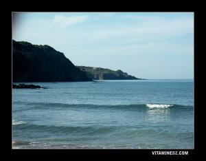 منظر من شاطئ