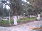حديقة الأمير عبد القادر بوسط مدينة عين عزال 2