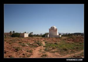 مقبرة بلدية تيوت