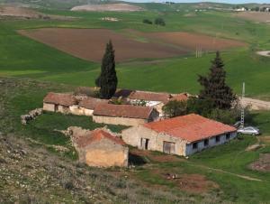 Champs agricoles près de la petite bourgade de Ain el Houta