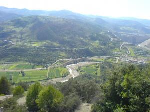 صورة من الغابة الجبلية لبلدية الأخضرية (1)