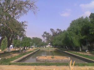 منظر من الحديقة العمومية بعد إعادة تريمها