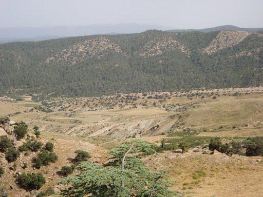 منظر من جبال