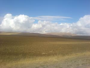 الحقول الزراعية بدوار زوابرية