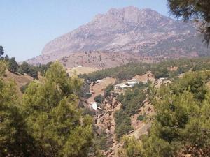منظر من جبال الونشريس