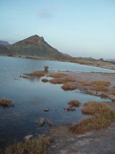 صورة لبحيرة بلدية عين ورقة