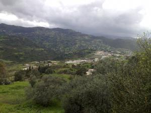 صورة من قرية عشبو