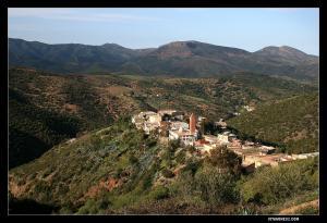 الزاوية الطيبية لقرية سيدي بن عمر