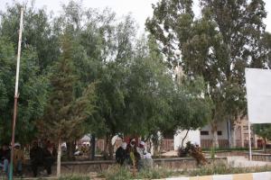 منظر من مدينة كاف لحمر