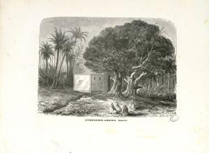 لوحة فنية لحمام بوغرارة سنة 1862