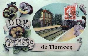 بطاقة تذكارية قديمة لمدينة تلمسان (الفترة الإستعمارية)