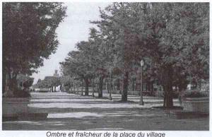 الشارع المؤدي إلى الساحة المركزية لمدينة بسباس (الفترة الإستعمارية)
