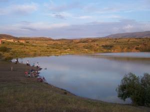 Rive du Barrage Boukaba (Commune de Mansoura)