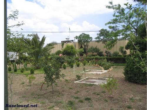 Jardin de l 39 h pital de ras el oued b b arreridj for El jardin de l abadessa