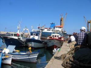 Bateaux de Pêche au Port de Dellys