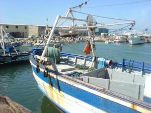 Port de Pêche de Zemmouri