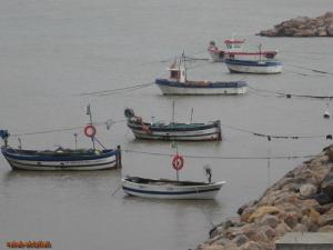 Bateaux de Pêche au port de Zemmouri