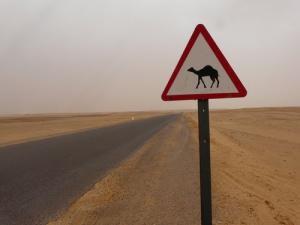 Autoroute dans la périphérie de Tindouf