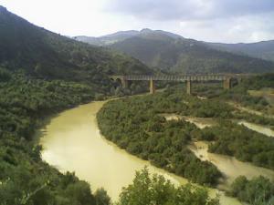 Le Oued de Ammal (Commune de Yesser)