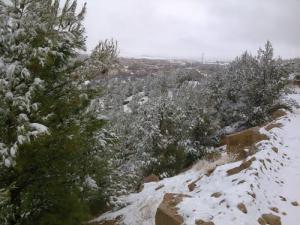 La Foret de Babar sous la neige