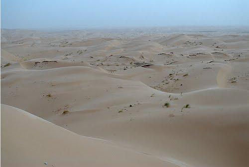 Les Dunes de Sable Entourant El Oued