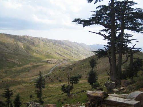 Verdure sur les Montagnes de Chelia