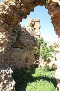 Cartier d?habitation Site arghéologique de KHEMISSA SOUK-AHRASS