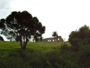 Ruine coloniale à Damous
