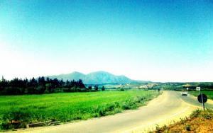 Entré Est de la ville de Hadjout