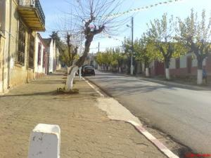 Rue Principale à Khemisti