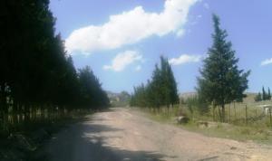 Route du Cimetière de Zeghaia