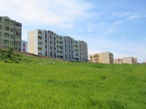 Un Lot d'immeubles à Mila