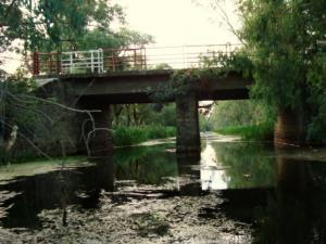 جسر وادي طانڨة ببلدية أم طبول