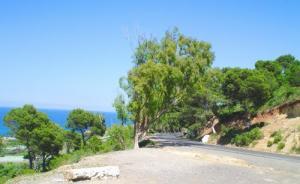 Entre Berar et Sidi Rached
