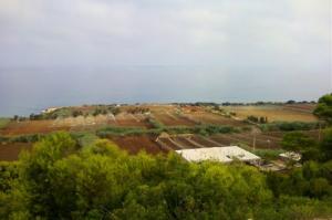 Sur la Route de Sidi-Rached