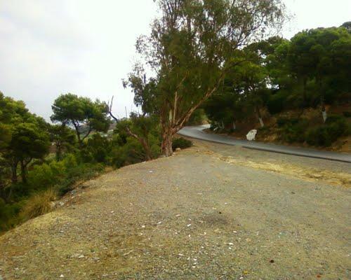 Route de Sidi-Rached � Tipaza