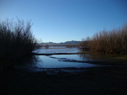 Le Lac de Ain Ben Khelil