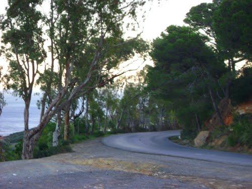 Route de Sidi Rached