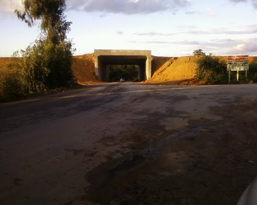 Projet Autoroute-Route de Sidi Rached