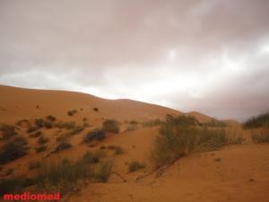 Les Dunes de Ain Sefra