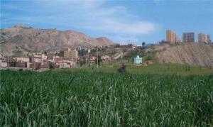 Vue sur la ville de Ain Tarek