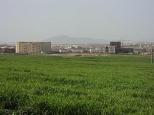 المركز الجامعي بمدينة