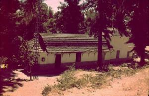 صورة قديمة من مدخل بلدية حمام ريغة