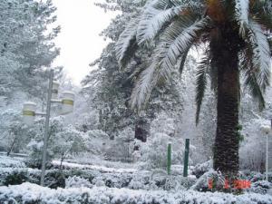 الثلوج تغطي الحديقة العمومية لمدينة مليانة