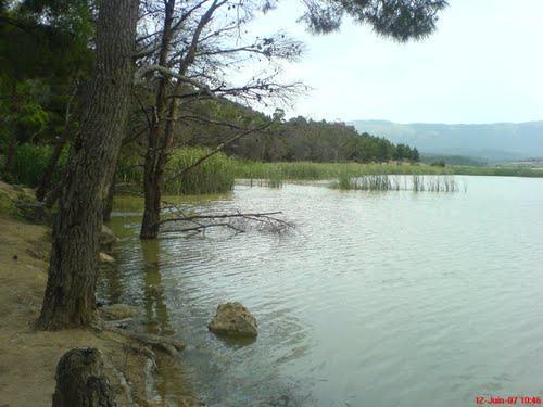 خنشلة بلاد الشاوية (1).............. 02-98928-photo.jpg