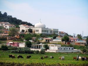 صورة لأحد مساجد مدينة ڨرڨور